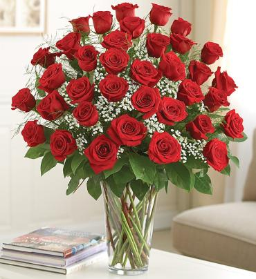 24 Premium Long Stem Red Roses