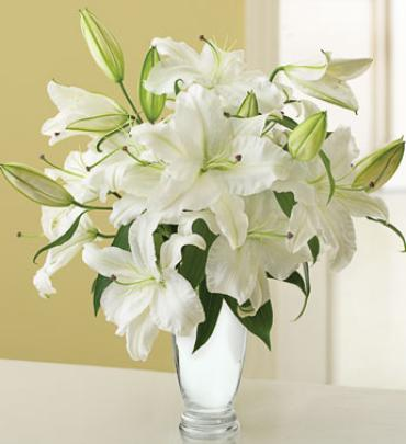 Graceful White Lily Bouquet For Sympathy Central City Lead